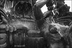 Leica Ic 1950 | Elmar 3,5/50